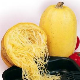 BIO dýně špagetová z Jižní Moravy 1ks