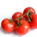 Rajčata z Moravy 0,5 kg
