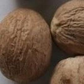 Muškátový ořech 1 ks