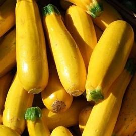 BIO cuketa žlutá 1 ks