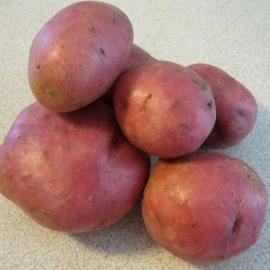 BIO brambory červené 1 kg