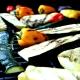 Grilovací vegetarian fbx