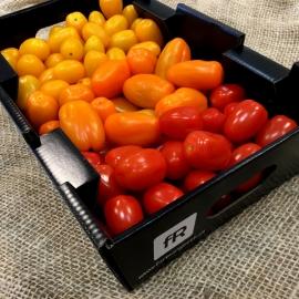 Barevná cherry rajčata z Jižní Moravy 1,5 kg