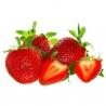 BIO jahody 250g