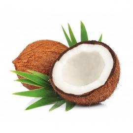 BIO kokosový ořech 1ks