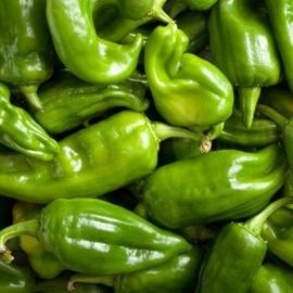 Papriky zelené 1ks