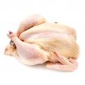 Farmářské kuře chlazené
