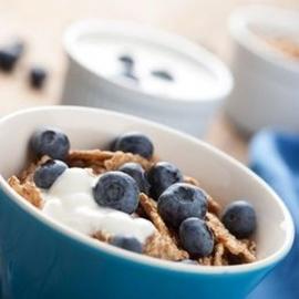Jogurt plnotučný borůvkový 150g