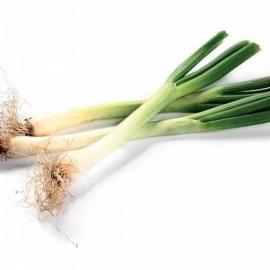 Jarní cibulka 1 svazek