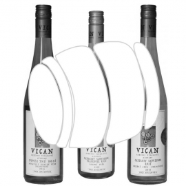 Bílá vína